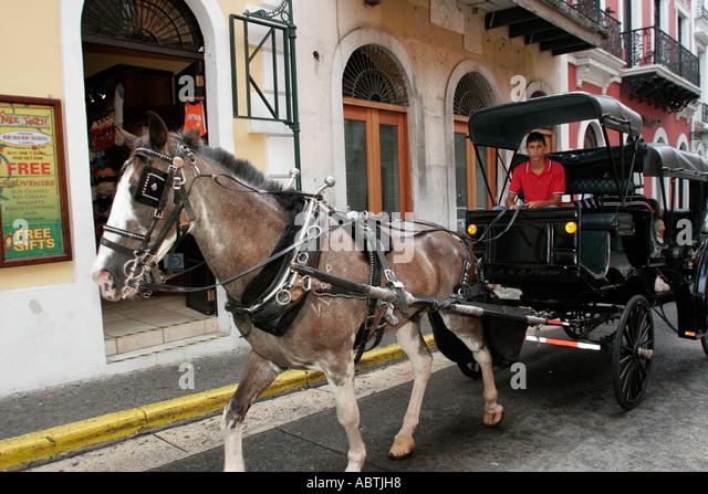 Puerto Rico Old San Juan Plaza de Armas horse drawn carriage Hispanic male driver - Stock Image