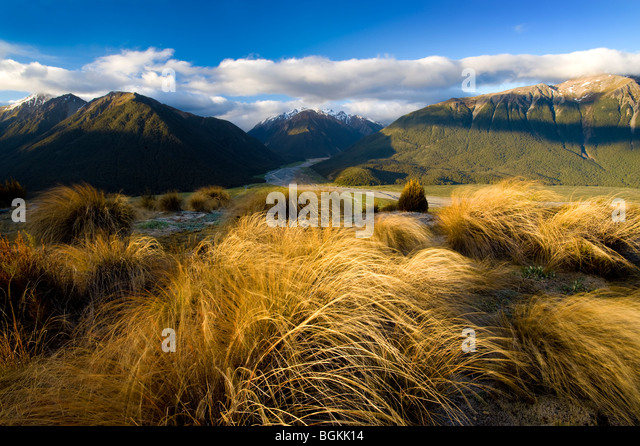 Arthur's Pass National Park, South Island, New Zealand - Stock Image