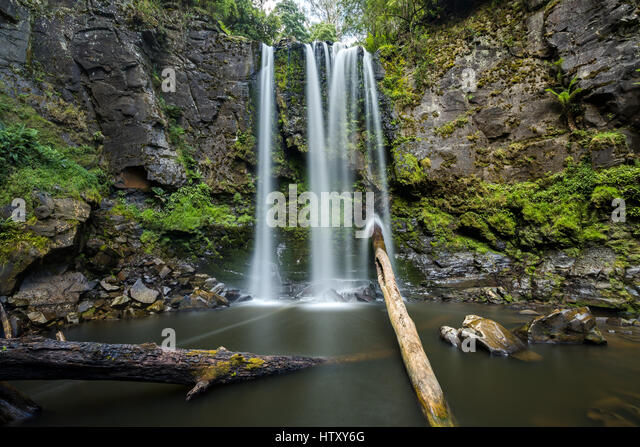 Hopetoun Falls - Great Ottway National Park, Victoria - Stock-Bilder
