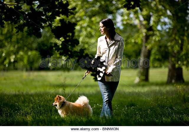 A young woman walking her dog - Stock Image