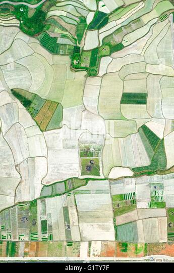 Yuqing. 20th May, 2016. Photo taken on May 20, 2016 shows the rice fields in Baini Township of Yuqing County in - Stock Image