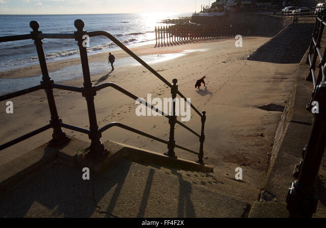 Isle of Wight, UK. 10th February, 2016. UK Weather, dog walking on the beach, late afternoon sunshine, Ventnor, - Stock-Bilder