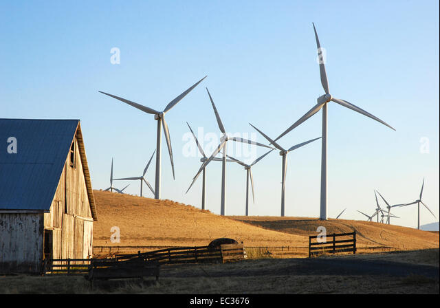 Wind farm on agricultural land - Stock Image