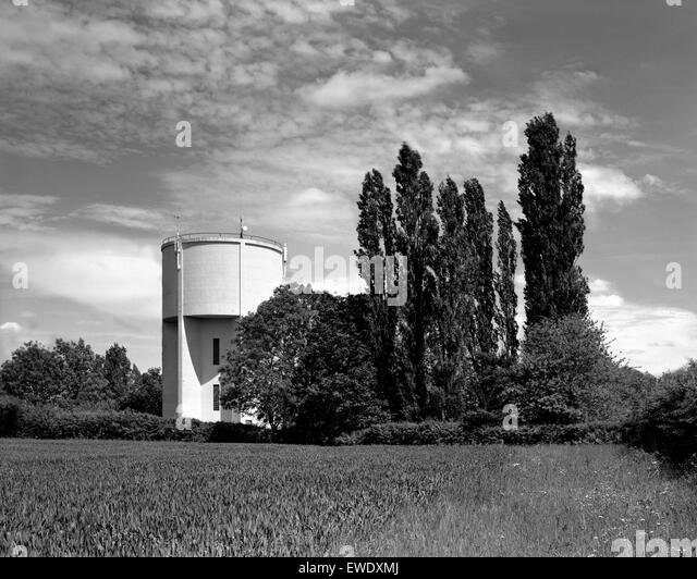 Water tower and poplar trees Great Gransden Cambridgeshire - Stock Image