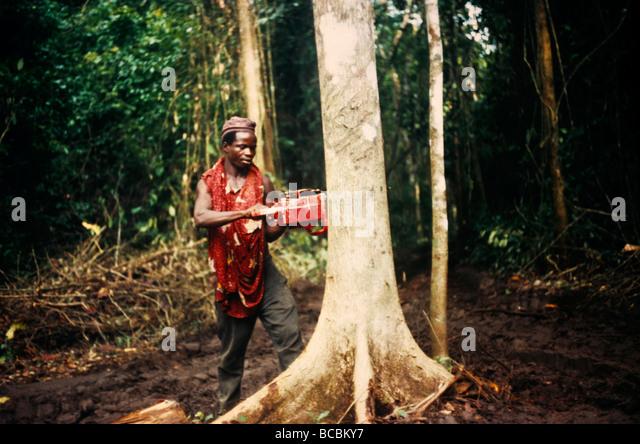 Nigeria Bendes Logging Man Using Power Saw - Stock Image