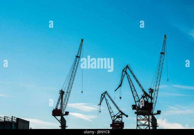 Silhouettes of cranes - Stock-Bilder