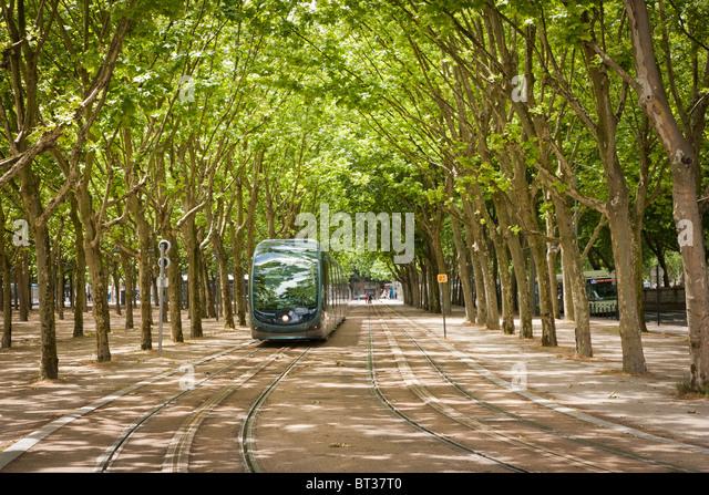 A modern city tram in a leafy avenue in Bordeaux - Stock Image