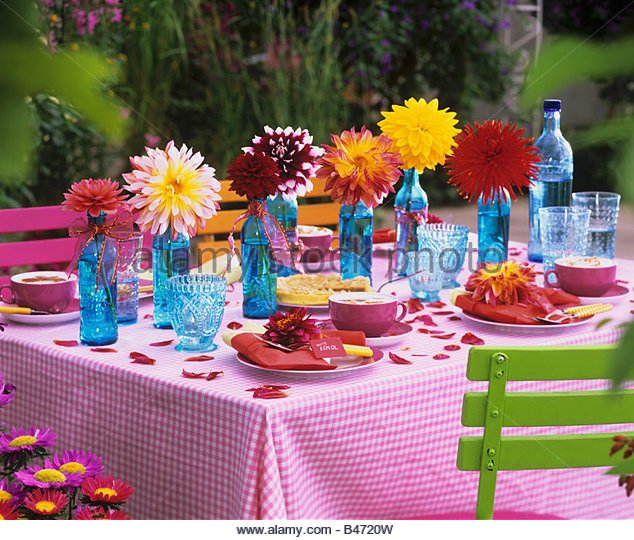 Table laid for coffee with colourful dahlias - Stock Image