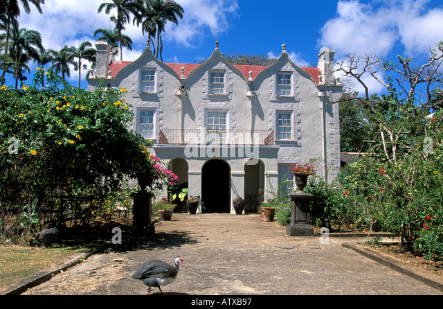 Barbados West Indies Caribbean St Nicholas Abbey Pea Fowl - Stock Image