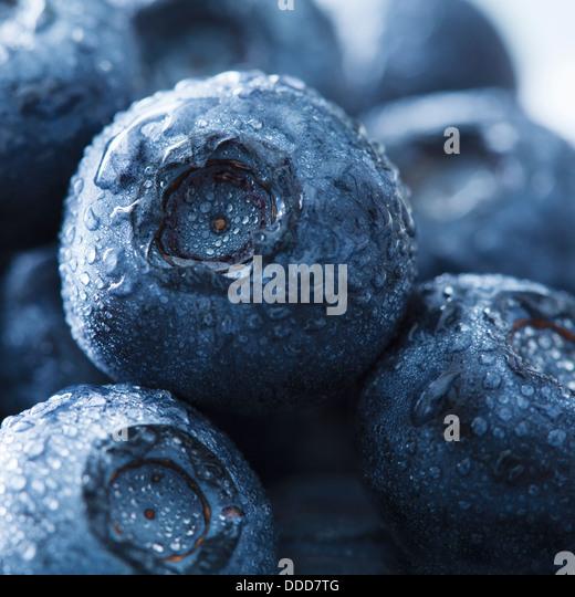 blueberries - Stock Image