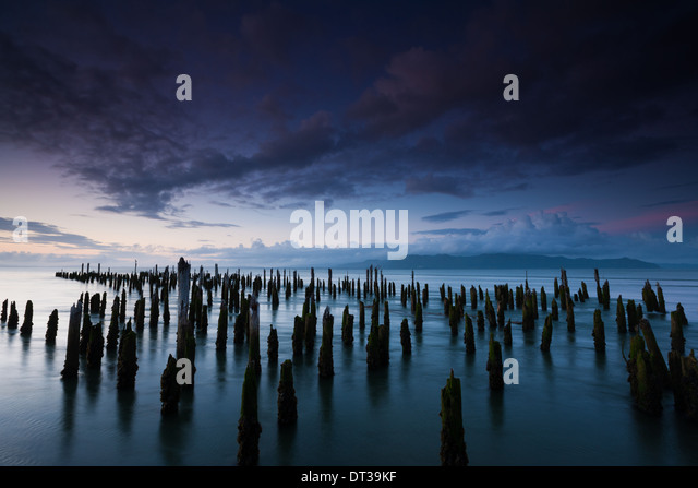 The weathered remains of wood pilings. Upright wooden stumps in water. Oregon, USA - Stock Image