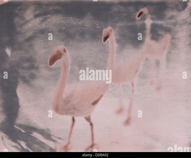 three pink flamingos yard ornaments, polaroid transfer, ©mak - Stock Image