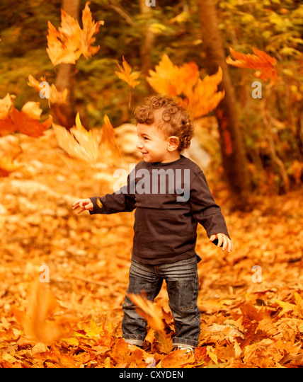 Image of adorable child enjoy autumn nature, pretty small male walking in the park, cheerful infant having fun in - Stock Image