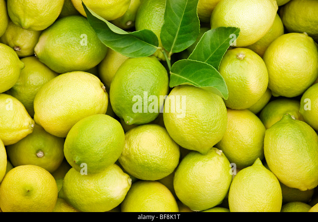 Group of fresh lemons - Stock Image