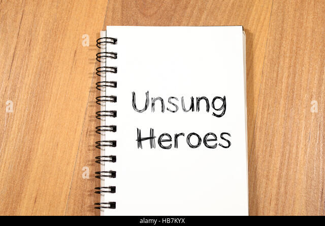 Teachers – Our Unsung Heroes essay