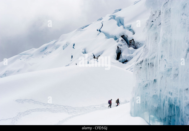 Climbers on the glacier of Volcan Cotopaxi, at 5897m the highest active volcano in the world, Ecuador, South America - Stock Image