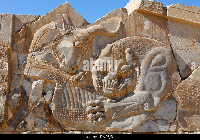 Lion hunting stock photos images alamy