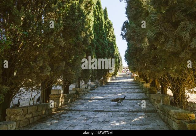 Filerimos Monastery - Stock Image