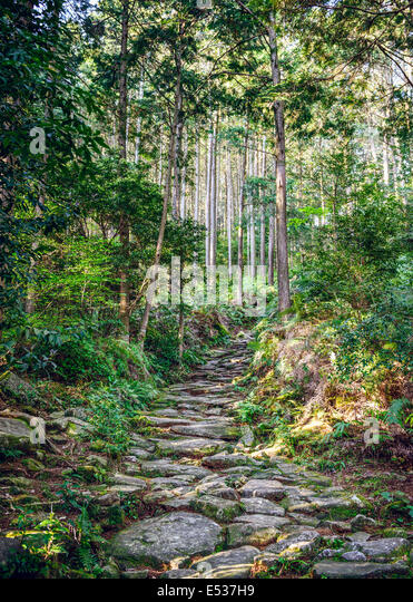 Kumano, Japan at Matsumoto Pass. The pass is part of the Kumano Kodo, a series of ancient pilgrimage routes. - Stock-Bilder