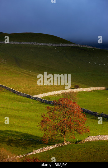 stone walls and barns nr Kettlewell, Wharfedale, Yorkshire Dales National Park, England, UK - Stock-Bilder