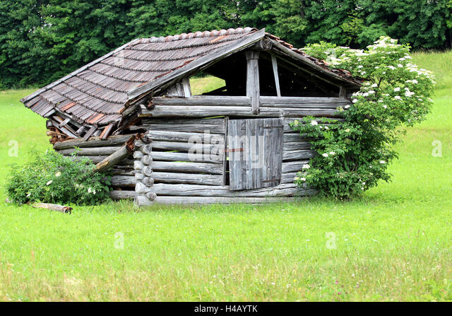 Meadow, decayed hay barn, - Stock Image