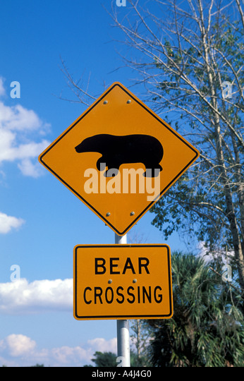 Bear crossing sign central florida near wekiva state preserve - Stock Image
