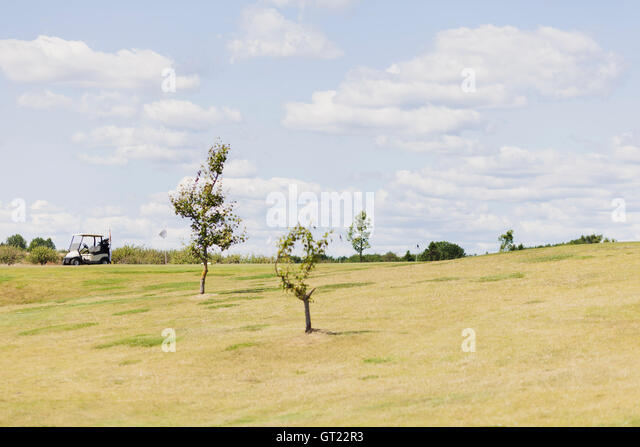 Mid distance view of golf cart on field against sky - Stock-Bilder