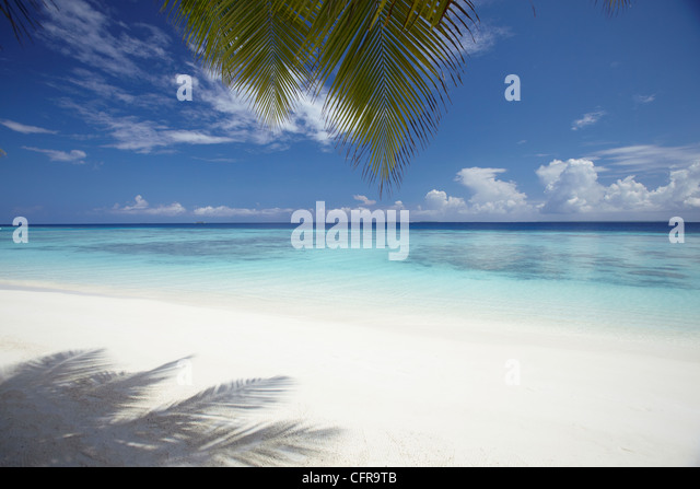 Maldives tropical beach, Maldives, Indian Ocean, Asia - Stock Image