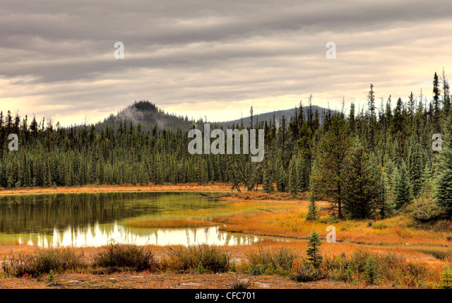 Lake in Athabasca River Valley, Jasper National Park, Alberta, Canada - Stock Image