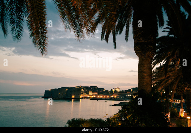 Palm trees and old Town Center of Dubrovnik at sunset , Dalmation Coast, Croatia - Stock Image