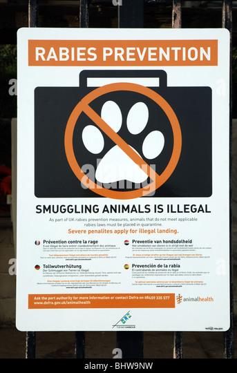 Rabies prevention notice, Brixham harbour, Devon, England, UK - Stock Image