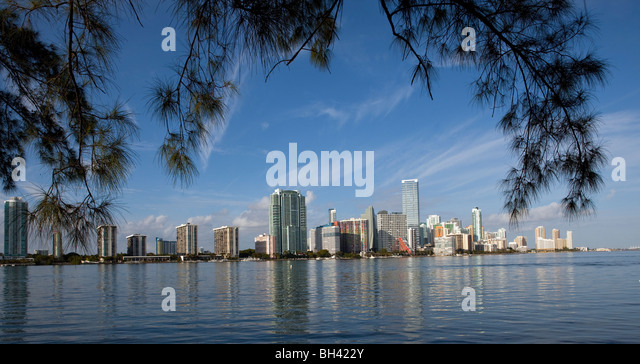 The Miami Skyline, Miami, Florida - Stock Image