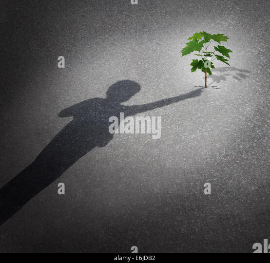 Life and hope as a grow concept with a shadow of a child touching a tree sapling growing through city pavement as - Stock Image