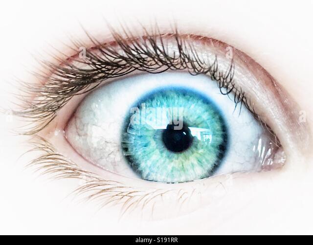 Close up of a human blue eye. - Stock-Bilder