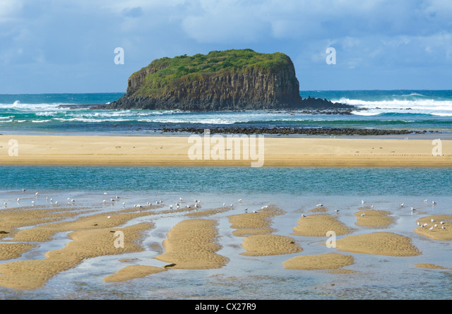 Stack Island, Minnamurra, New South Wales, Australia - Stock-Bilder