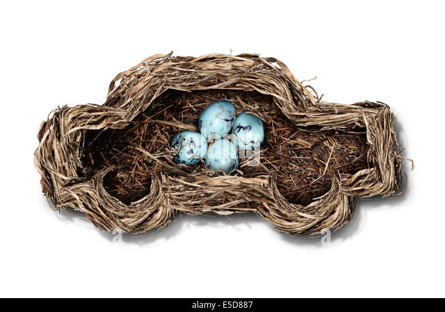 Car safety and auto insurance concept as a nest shaped as an automobile protecting a family of bird eggs as a concept - Stock Image