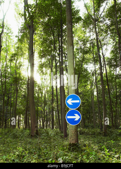Signs pointing in opposite directions - Stock Image