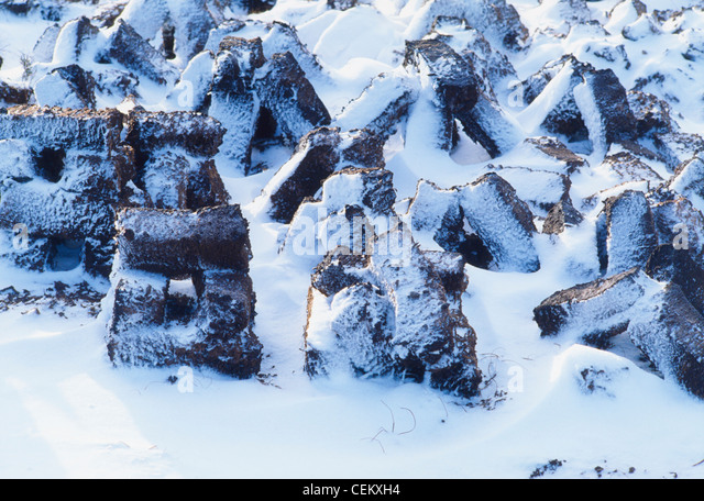 Snow And Turf - Stock Image