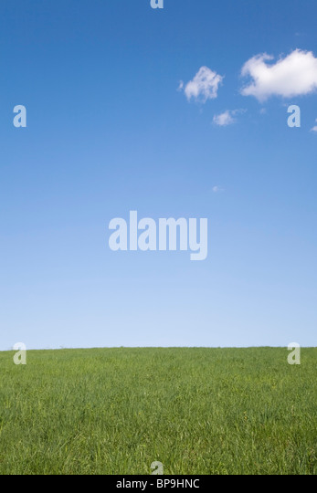 laval, quebec, canada; grass field and blue sky with cumulus clouds - Stock Image