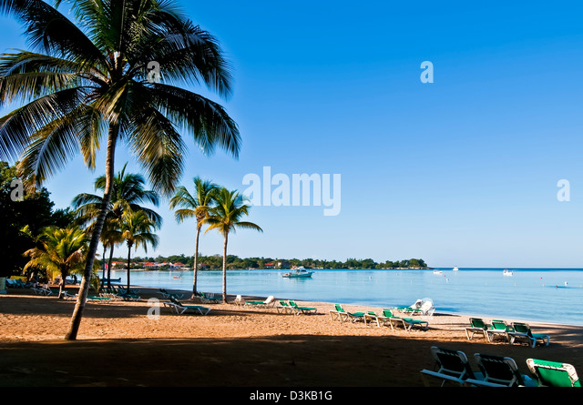 Deserted Negril beach flanked by coconut palm trees early in the morning - Stock Image