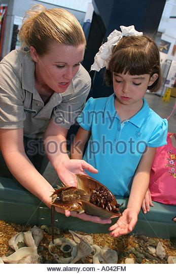 Alabama Public Aquarium : Alabama Dauphin Island The Estuarium public aquarium hands on exhibit ...