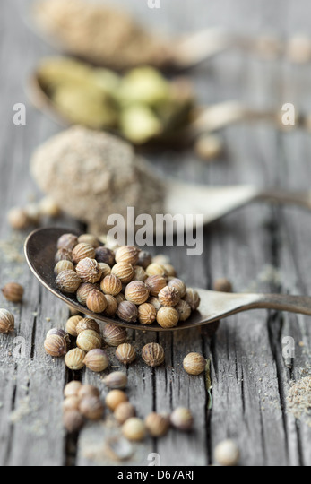 Spoons with cardamom and coriander seeds and powder - Stock Image