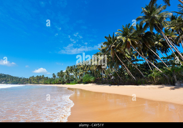 Tropical paradise idyllic beach. Sri Lanka - Stock-Bilder