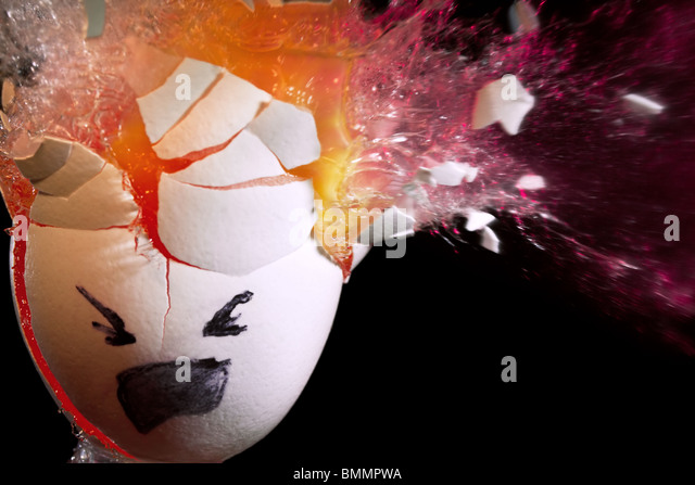 Egg gets wasted - Stock Image