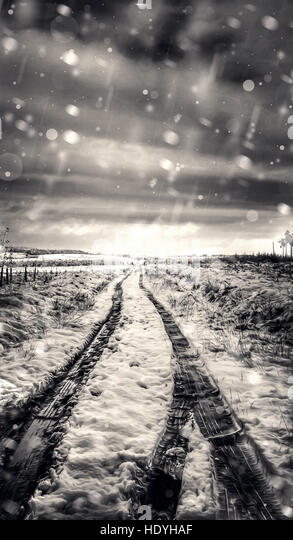 road in snowy forest - Stock Image