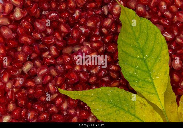 Fruit vegetables grain