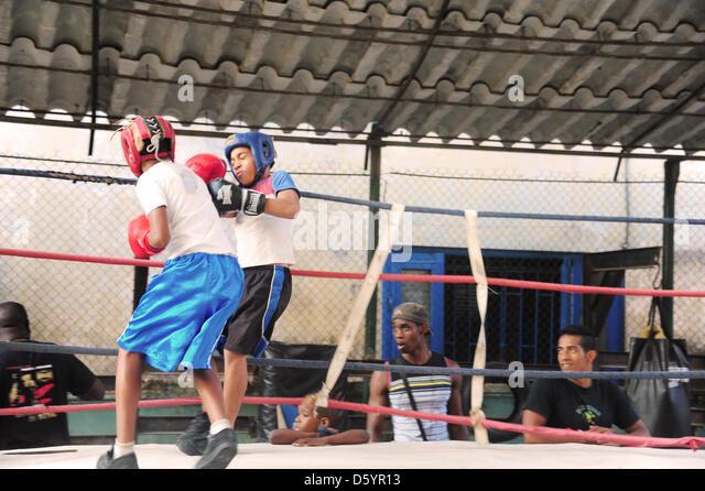 Cuba boys boxing stock photos cuba boys boxing stock for Gimnasio de boxeo