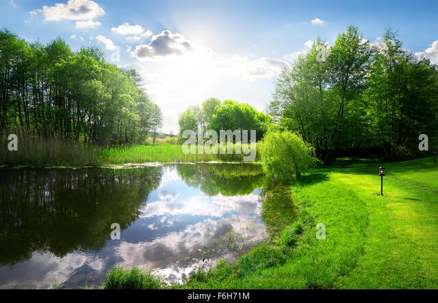Green park near calm river under sunlight - Stock Image