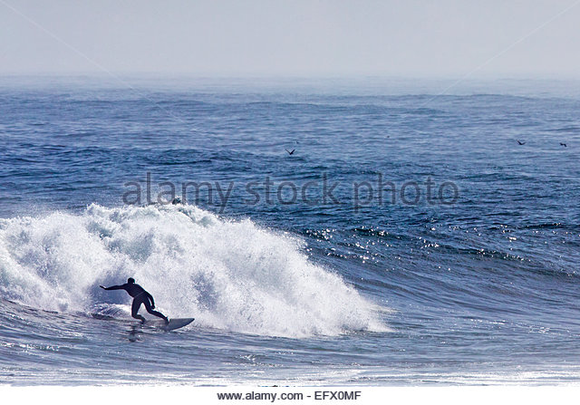 Surfer on surf board riding wave - Stock Image
