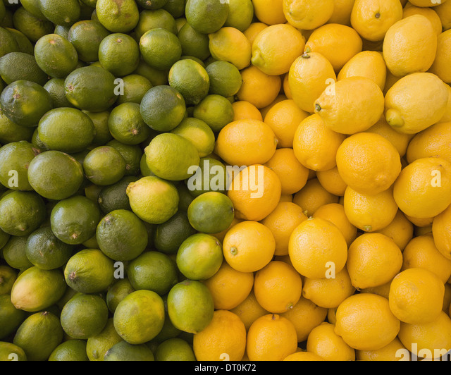 Lemons limes citrus fruits divided in two piles - Stock Image
